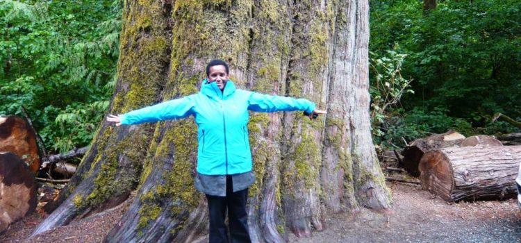 Rainforest at Goldstream Park